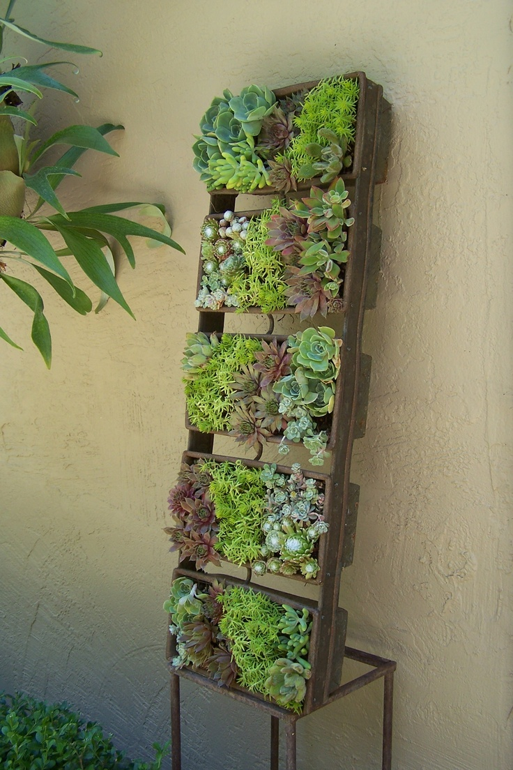 A vertical succulent planter using an industrial bread pan. Kim Pearson Designs