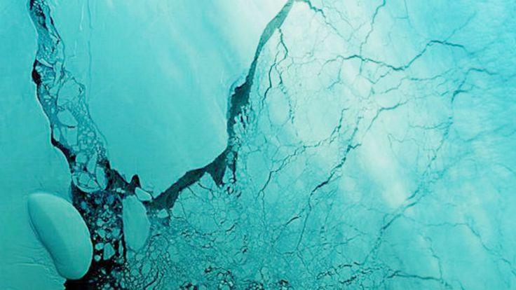 A plataforma de gelo Larsen C, aquela que se soltou recentemente, deu à luz um bebê de mais de 450 bilhões de quilos, na semana passada, um iceberg chamado agora de A68. As observações mais recentes …