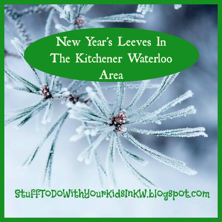A New Year's Day #Leeve Is Quite A #Canadian Tradition    According to Wikipedia a Present Day Levee  can be defined as.....        Levée...