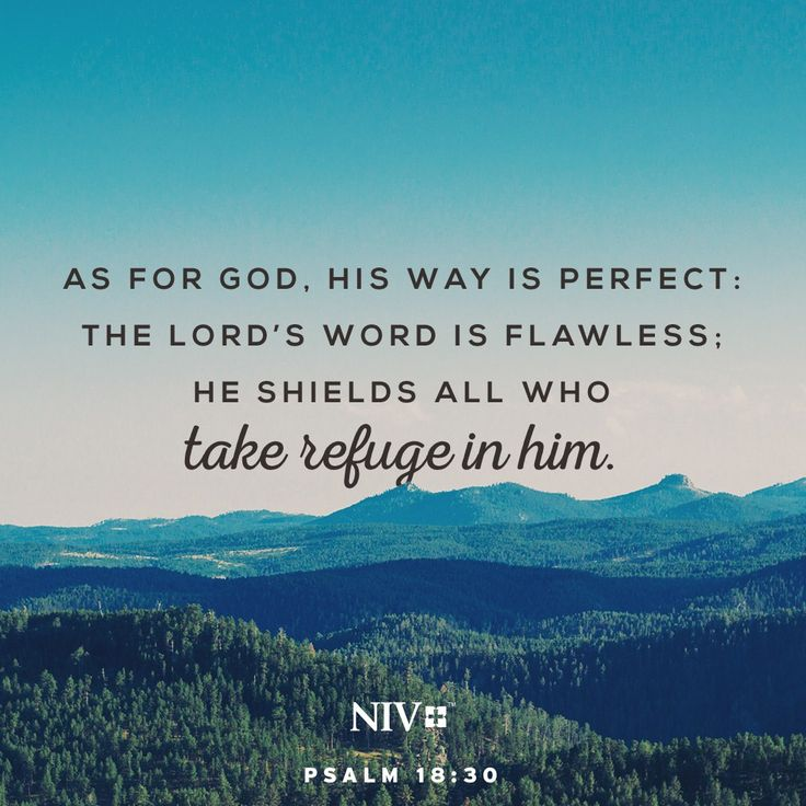 NIV Verse Of The Day: Psalm 18:30