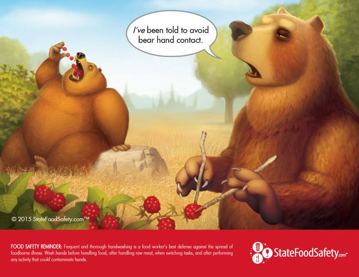 Safety Calendar Ideas : Bear hand contact cartoon food safety reminder frequent