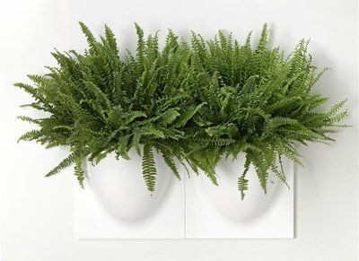VertiPlants, wand plantenpot, wit, 30x30cm, wand opberger.