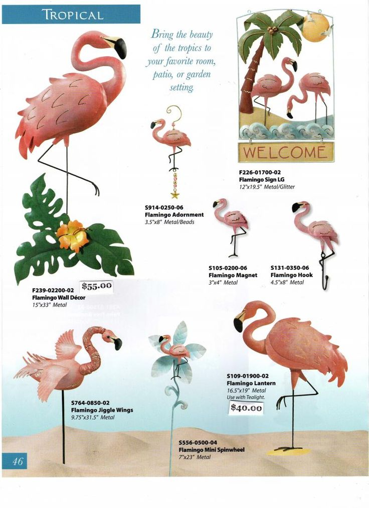 231 best Flamingos images on Pinterest | Flamingos, Flamingo and ...