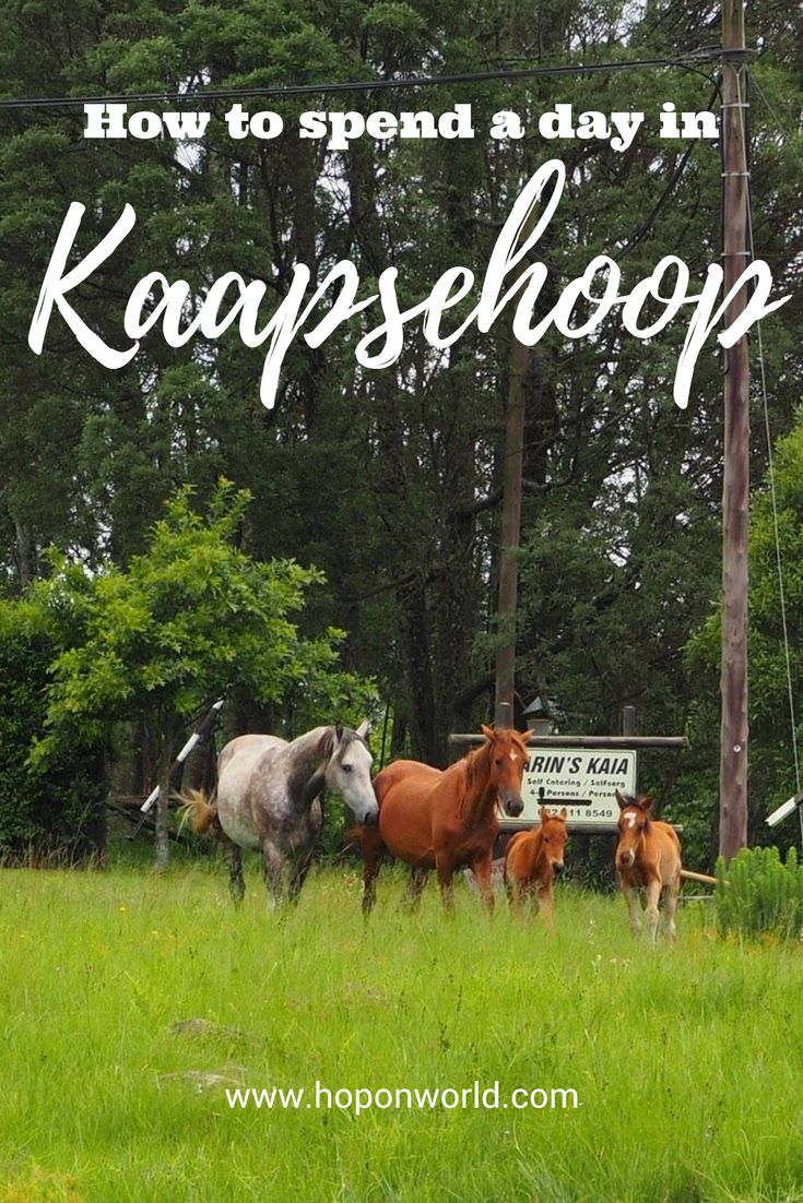 How to spend your day in Kaapsehoop