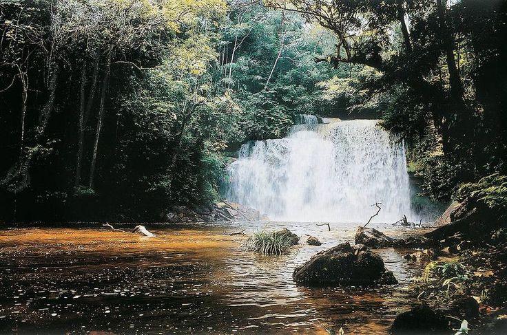 Cachoeiras de Presidente Figueiredo (AM)