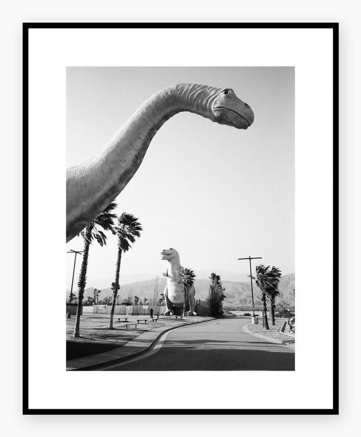 #HELJEPOLAROIDS #dinosaur #cali #interior #poster