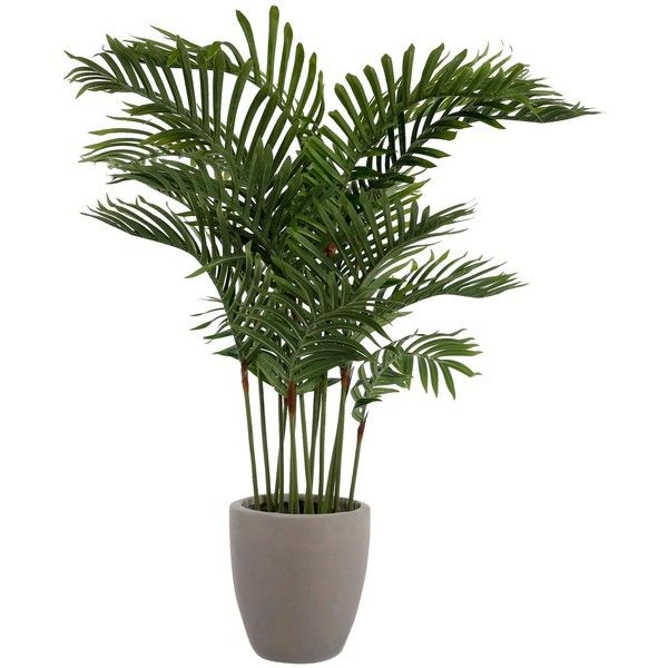 Artificial Palm Plant ($56) via Polyvore featuring home, home decor, floral decor, faux flowers, artificial silk flowers, faux florals, tropical palm trees and colored trees