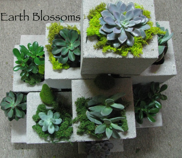 Constructed This Planter From 1 2 Cinder Blocks To Contain