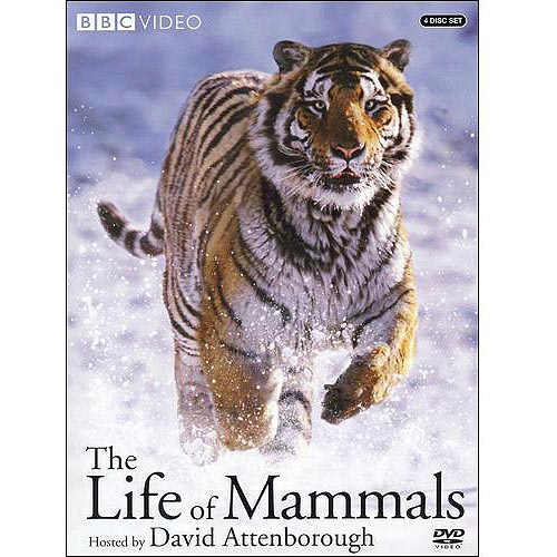 The Life Of Mammals, Vol. 1-4   In ten parts, the award-winning David Attenborough (2002 Emmy winner for The Blue Planet: Seas of Life; The Life of Birds) introduces us to the most diverse group of animals ever to live on Earth, from the smallest - the two-inch pygmy shrew, to the largest - the blue whale; from the slowest - the sloth, to the swiftest - the cheetah; from the least attractive - the naked mole rat, to the most irresistible - a human baby.