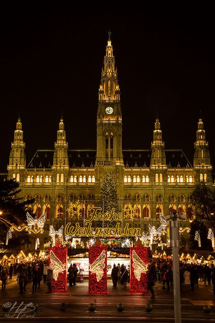 Christmas in Vienna, Austria - I am going there in 2 weeks! Can't wait! - Allison