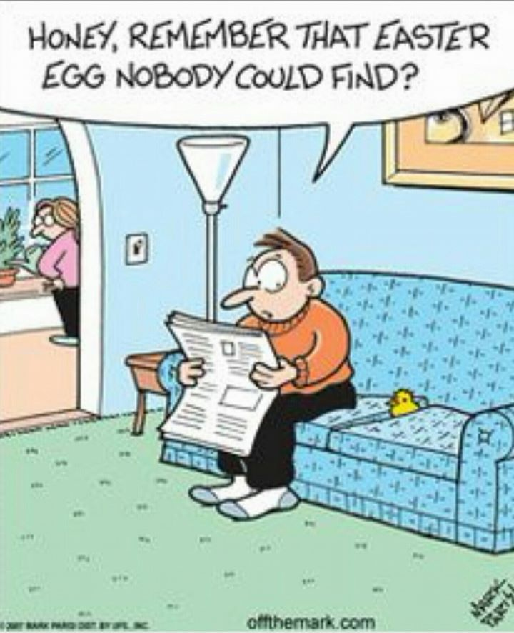Funny Happy Easter Quotes: 33 Best Easter Funnies... Images On Pinterest