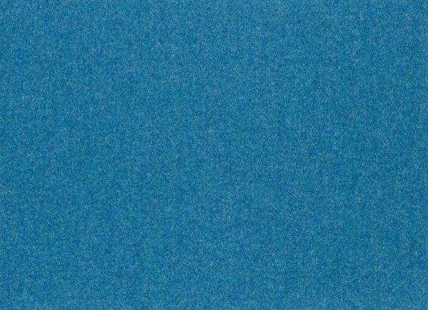 Cheviot Ocean