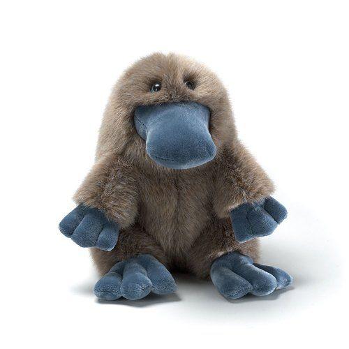 Les 25 meilleures idées de la catégorie Bébé platypus sur - fototapeten f r k che