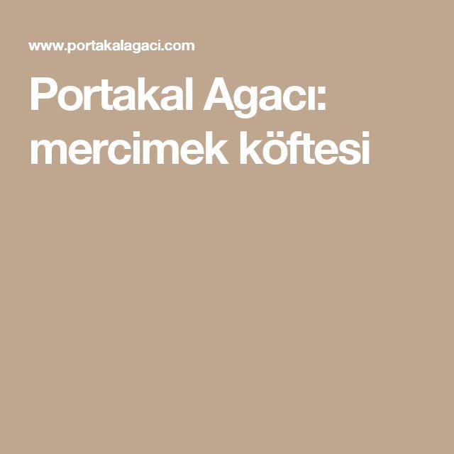 Portakal Agacı: mercimek köftesi