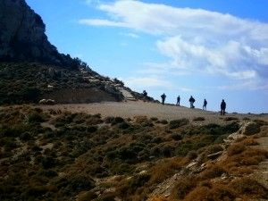 Walking Dimension | guided walks & more...