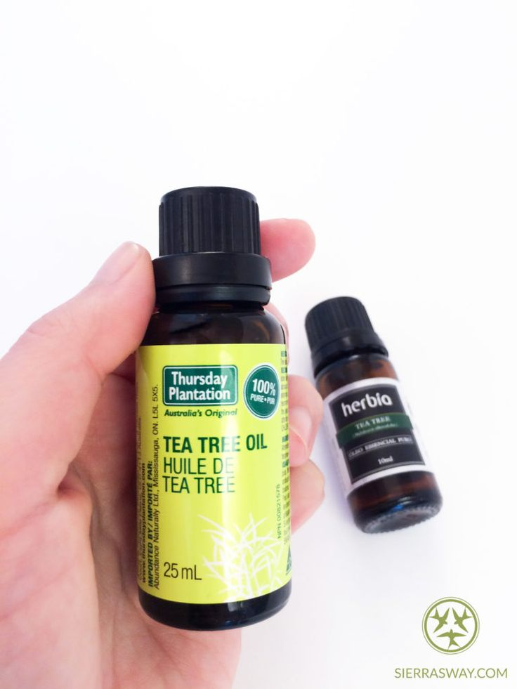 Tea Tree Essencial Oil - Healing Naturally - Sierra's Way