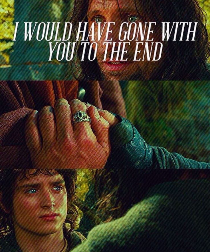 From LOTR: The Fellowship of the Ring. Aragorn is completely selfless and loyal, and right here, he has just overcome his urge to let The Ring take him. His hands are right around it in Frodo's hands and he still doesn't take it! Only the strongest of mind and heart can resist the power of The Ring. I love this character so much.
