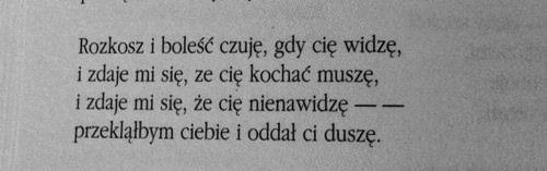 """Kazimierz Przerwa-Tetmajer """"Do nieznajomej"""""""