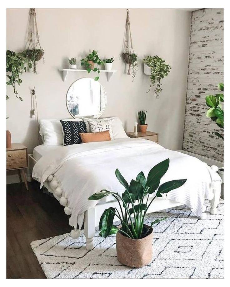 Cómo hacer un hogar cálido con las plantas verdes y flores