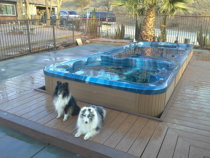 63 best swim spas images on pinterest for Pool show sydney