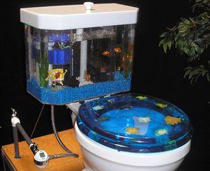Fish Tank Bed Frame 12 Best Aquariums Images On Pinterest  Fish Aquariums .