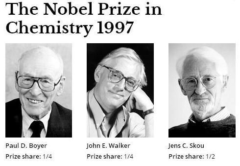 "The Nobel Prize in Chemistry 1997 was divided, one half jointly to Paul D. Boyer and John E. Walker ""for their elucidation of the enzymatic mechanism underlying the synthesis of adenosine triphosphate (ATP)"" and the other half to Jens C. Skou ""for the first discovery of an ion-transporting enzyme, Na+, K+ -ATPase""."