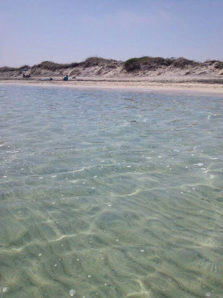 Ultima Spiaggia - vicino all'Oasi delle Cesine, il cordone di sabbia retrodunale è ancora intatto. Se si percorre un pò di strada a piedi c'è pochissima gente. Con il vento di scirocco è perfetta.