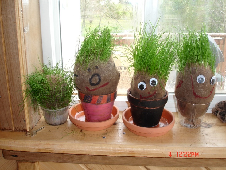 I need to make these cute Grass Head Guys -- to teach my ...