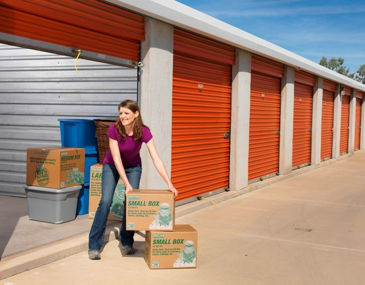 how to get rid of rats in storage units