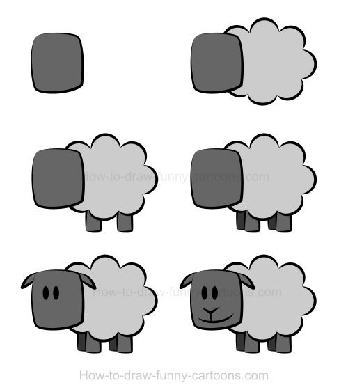 Drawing a sheep! :)