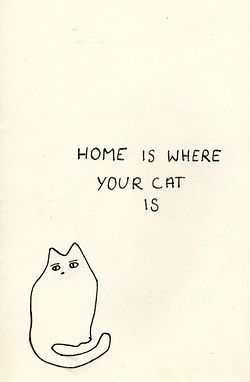 True, cats, and the doggy:)