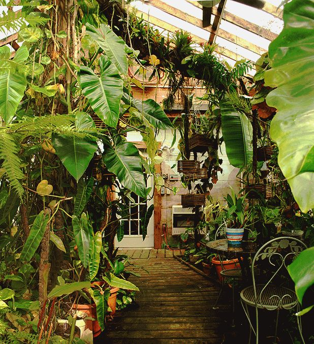 my ideal indoor garden dream house pinterest. Black Bedroom Furniture Sets. Home Design Ideas