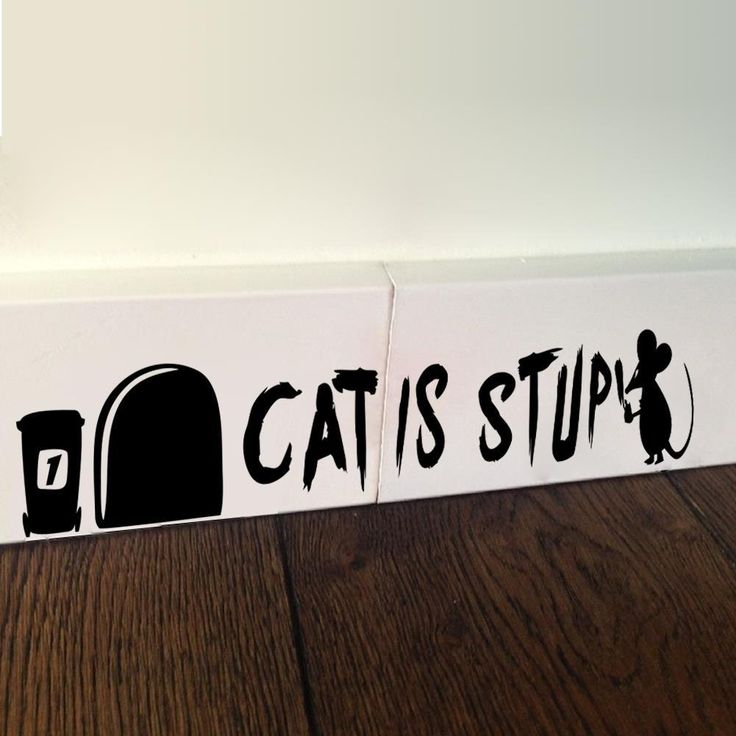 Cat Is Stupid Funny Mouse 28.5x4.6cm Wall Sticker   Free Worldwide Shipping!  Only $3.49    Order from: www.happycozyhome.com