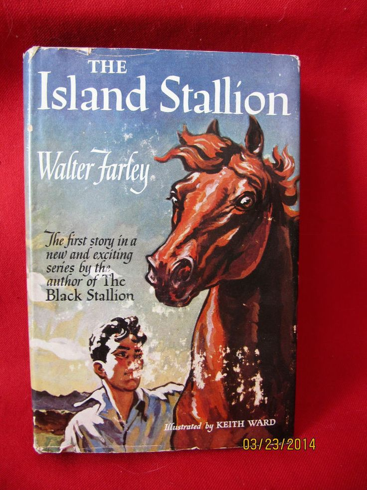 Black Stallion Book Cover ~ Best comps books images on pinterest book cover art