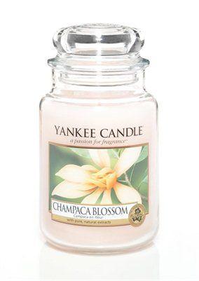 Champaca Blossom. Den sällsynta skönheten av förtrollande magnolia blommor kommer till liv i denna nektar av blommor och frukt. #YankeeCandle #ChampacaBlossom
