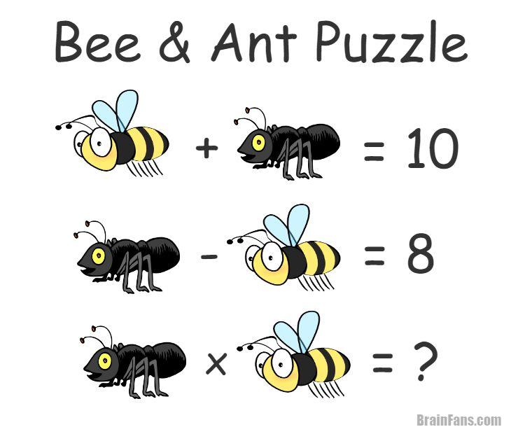 Brain teaser - Number And Math Puzzle - Bee and ant - Bee and ant puzzle for your brain. Can you solve this easy riddle? Check out the answer: http://brainfans.com/brain-teaser/number-and-math-puzzle/56/bee-and-ant
