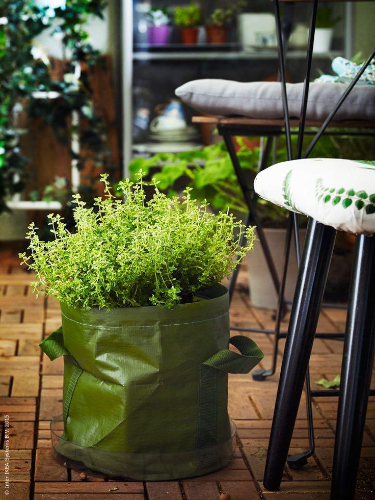 I tidig mars kan sommaren kännas avlägsen, men på IKEA längtar vi efter varmare väder och slår upp dörrarna till sommarbutiken! I år stannar vi i stan och skapar personliga smultronställen – oavsett om det är en nära park, en balkong eller en hemlig trädgård.