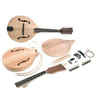 Saga a model mandolin kit craft diy pinterest mandolin and saga solutioingenieria Choice Image