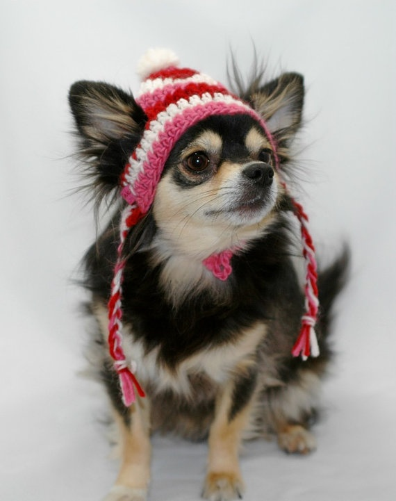 Dog hat crocheted Valentines Day dog hat with ear by ...