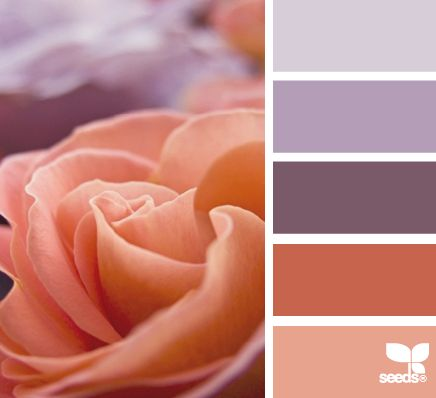 Color: Rose Hues by Design Seeds - lavender, light purple, plum, terra cotta, rose.
