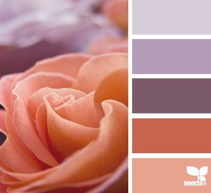 Color: Rose Hues by Design Seeds - lavender, light purple, plum, terra cotta, rose.