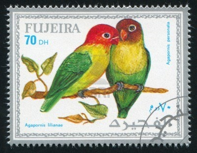 FUJEIRA - CIRCA 1972: stamp printed by Fujeira, shows tropical parrot