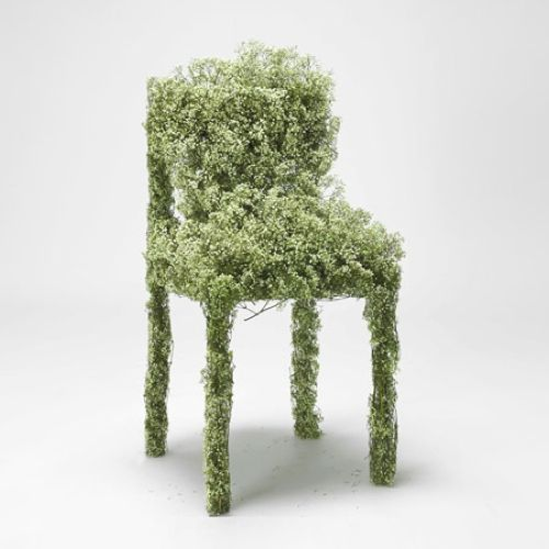 Harvest  London designerAsif Khanhas produced an installation of chairs and tables made of freeze-dried flowers.Called Harvest, the project aims to produce furniture from plants commonly found in London.