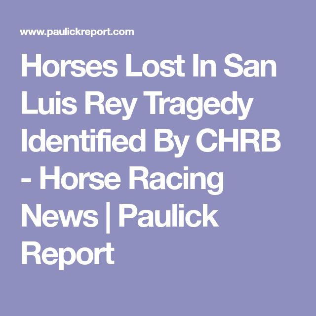 Horses Lost In San Luis Rey Tragedy Identified By CHRB - Horse Racing News | Paulick Report