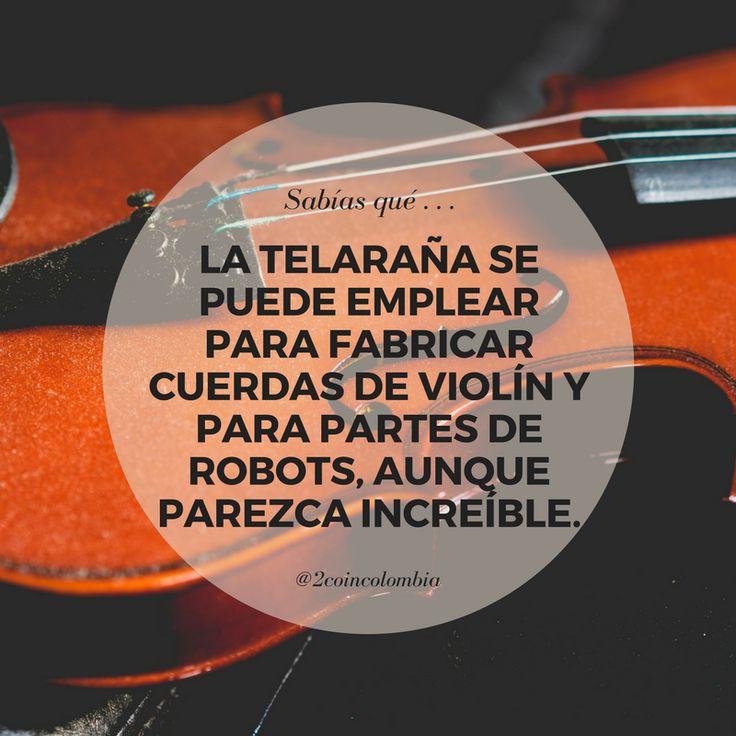 Nuestros productos: 2coin.com.co  #2coin #sabiasque #findesemana #quote #frases #colombia #tiendaonline #wow ##curiosidad
