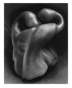 Edward Weston   pepper