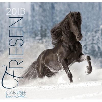 35 best images about le frison on pinterest horses for. Black Bedroom Furniture Sets. Home Design Ideas