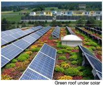 Die 25+ Besten Ideen Zu Extensive Dachbegrünung Auf Pinterest ... Intensive Extensive Dachbegrunung Nachhaltig