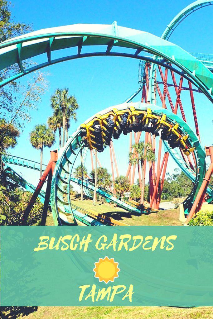 b47520dfb799a2d14b58cc46a1ea53ba - Busch Gardens In Tampa Phone Number