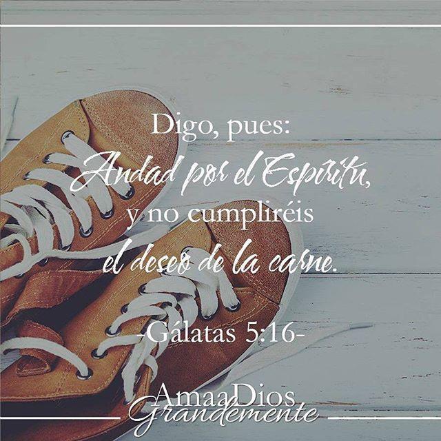 Gálatas 5:16 Digo, pues: Andad en el Espíritu, y no satisfagáis los deseos de la carne.♔